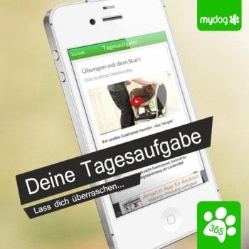 MyDog365-Tagesaufgabe