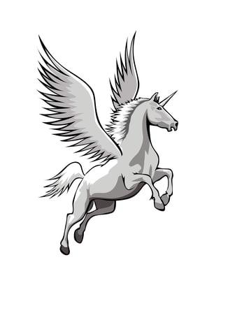 Unicorn Business