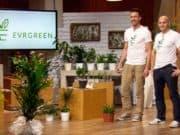 Evrgreen